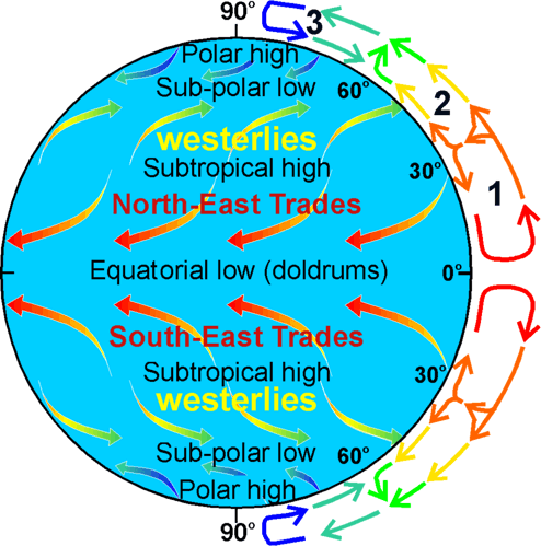 ocean currentsglobal belts of prevailing wind the numbers 1, 2, 3 refer to the convection cells giving rise to the winds 1 hadley cell 2 ferrel cell 3 polar cell